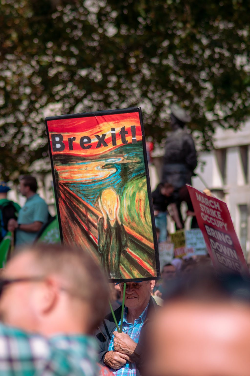 Brexit march placard
