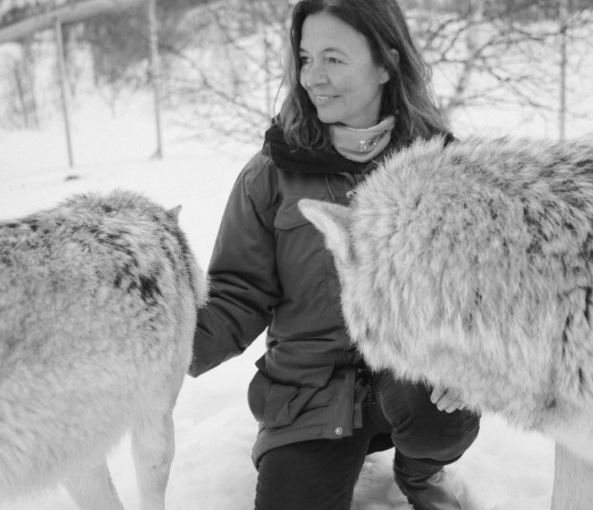 Catherine Fairweather stroking a wolf in Norway