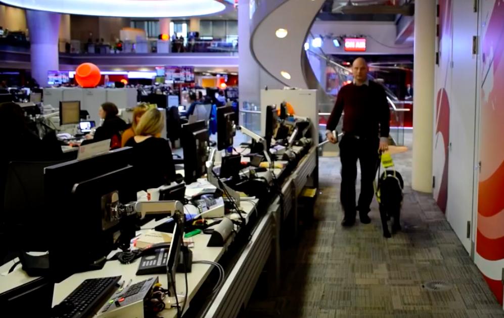 Journalist walking assistance dog wearing reflector in BBC newsroom